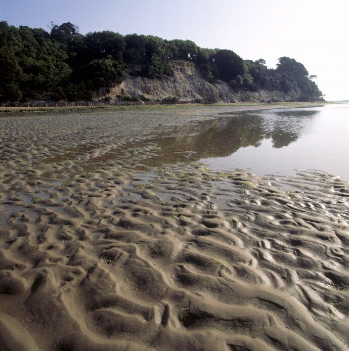 The changing shoreline of Brownsea Island